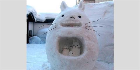 Tottero Snowco