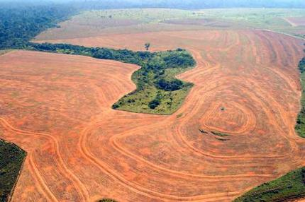 amazon_deforestation