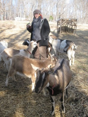 Raynebo is the name of the human.  The goats are called  Dancer, Sage, Calypso, Lottie (almost hidden by Raynebo) and Lark.