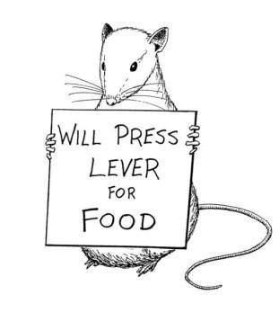Rat race or self correcting liberation?