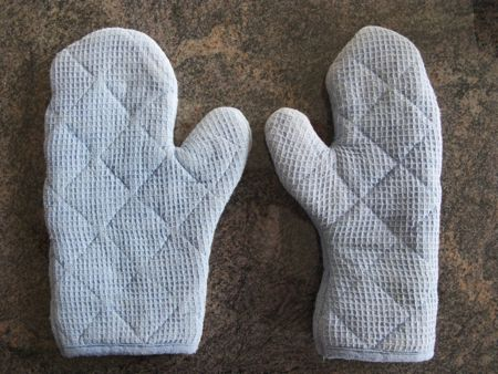 Aster suggested oven mits