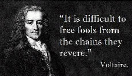 free fools voltaire