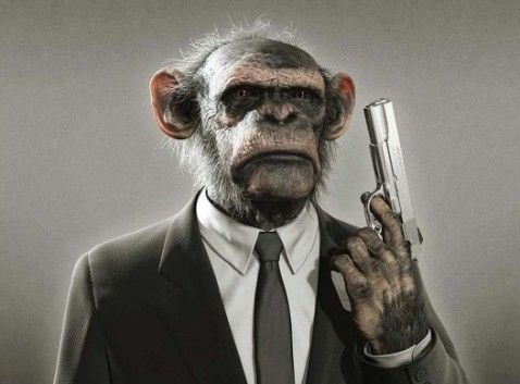 monkey with gun