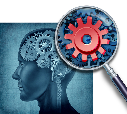 Feedback inspects the brain