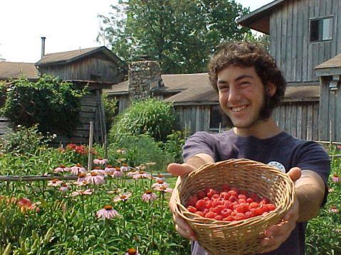 raspberrys-offered.jpg