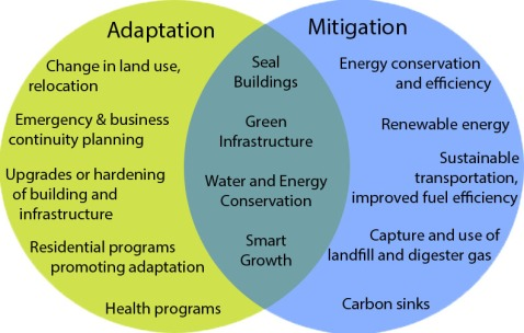climate disruption adaption and mitigation