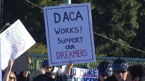 daca works poster