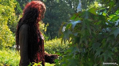 damanhur music of the plants