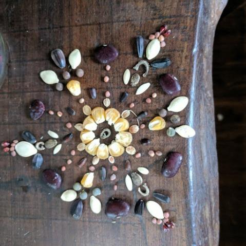 seed mandal.jpg